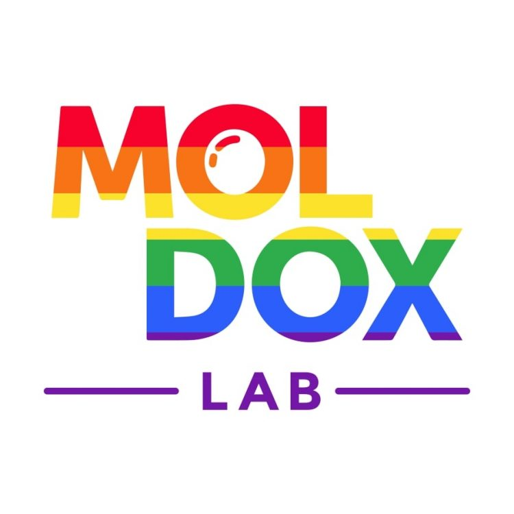 Înscrie-te la atelierele INTERACTION, EXPLORATION, FILM CRITICISM din cadrul Moldox Lab!